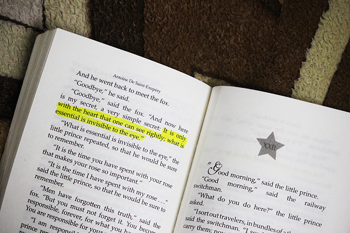 the little prince book review sunita biddu