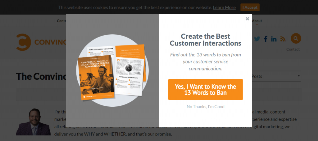 best lead magnet examples